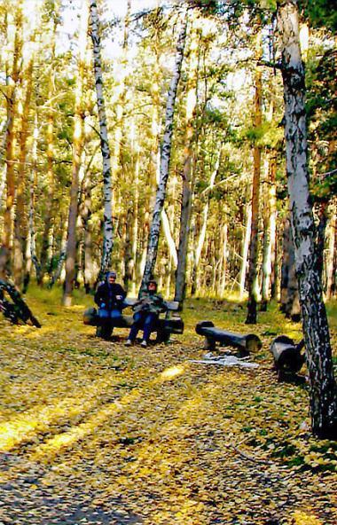 В среду, 23 октября, в Челябинской области ожидается облачная погода с прояснениями, преимуществе