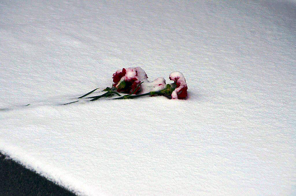 В Челябинской области завтра, 15 февраля, в 30-ю годовщину со дня вывода советских войск из Афган