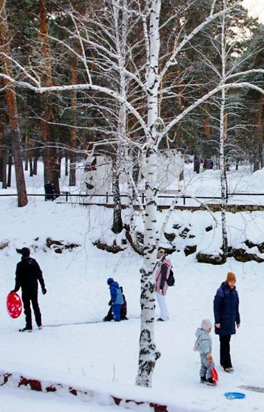В понедельник, 6 января, в Челябинской области ожидается облачная погода, возможен небольшой снег
