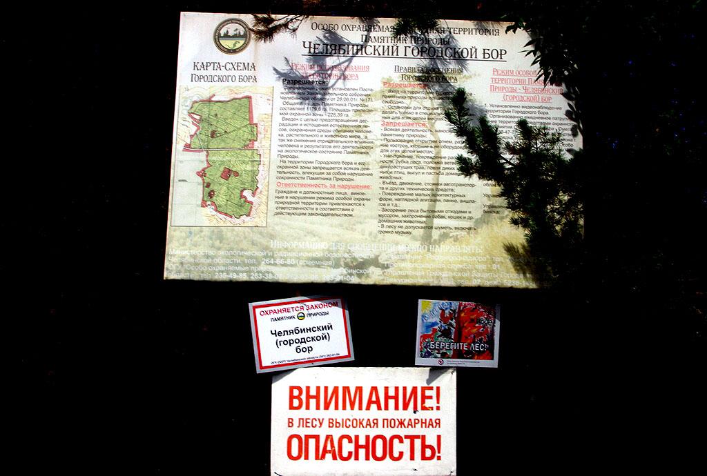 Как сообщили агентству «Урал-пресс-информ» в главном управлении лесами, огнем было охвачено 2,8 г