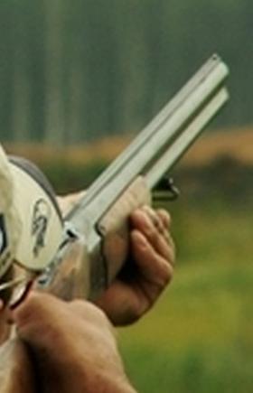 Правительство Челябинской области утвердило лимит и квоты добычи сибирской косули, лося, рыси на