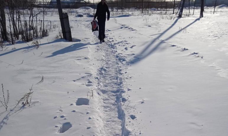 Многодетная мама из поселка Роза (Коркино, Челябинская область) в третий (!) раз за неполные два
