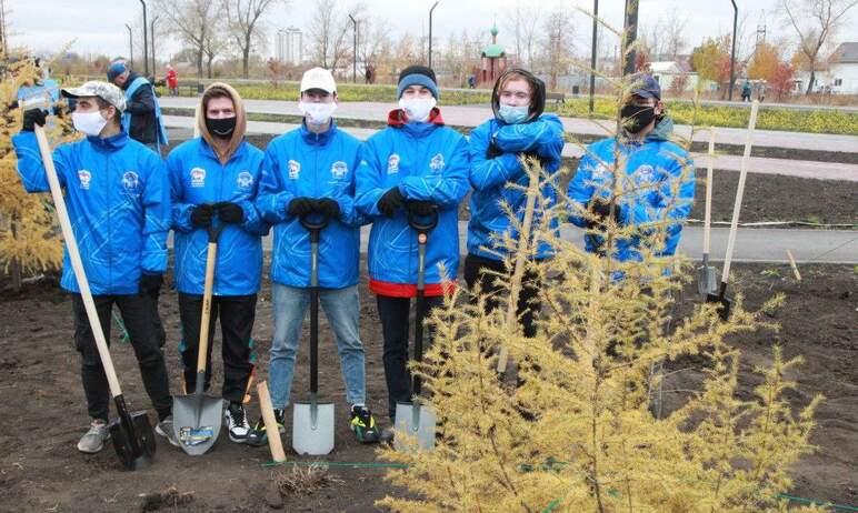 В Челябинске вчера, 11-го октября, в новом Парке Дружбы в Тракторозаводском районе высадили десят