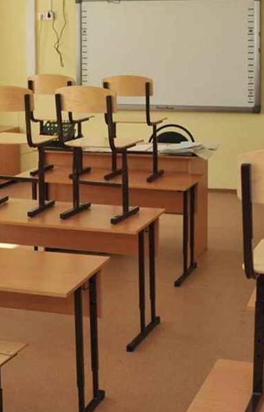 В общеобразовательных учреждениях Сосновского района Челябинской области приостановлен учебный пр