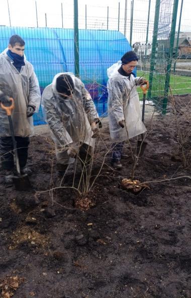 В Каслях (Челябинская область) в рамках государственной программы «Зеленый город» закончена работ