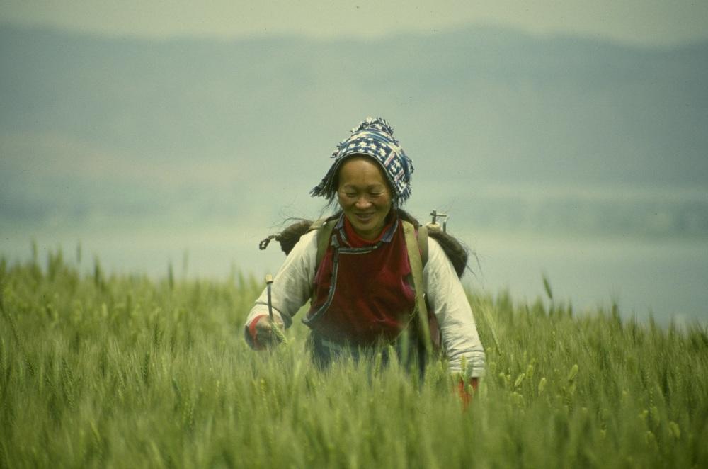 В переводе с китайского «ни хао» означает «здравствуй». Алексей Суздалов готов приветствовать так