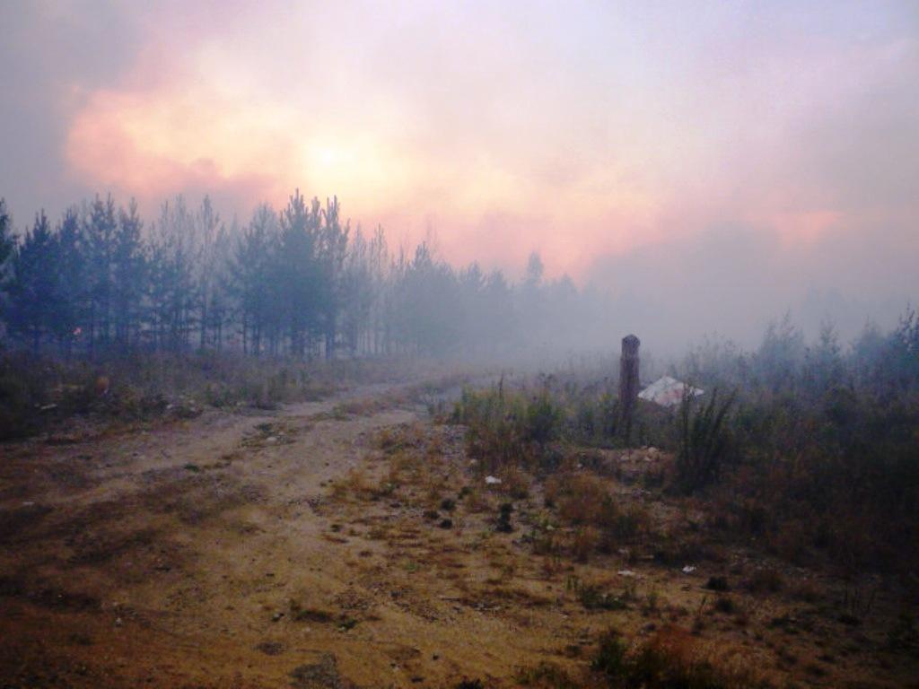 Житель Уйского района (Челябинская область), чтобы выжечь старую траву, прикрепил подожжённую авт