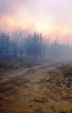 Особый противопожарный режим введен на территории Карталинского муниципального района (Челябинска