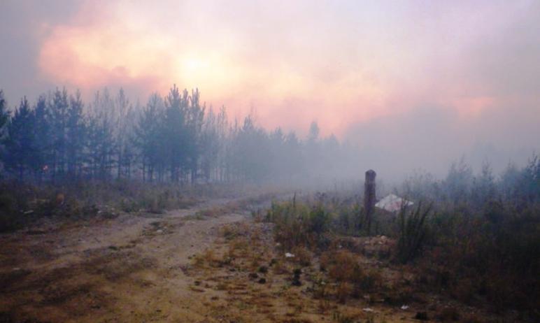 Губернатор Челябинской области Алексей Текслер направил на юг региона, где бушуют природные пожар