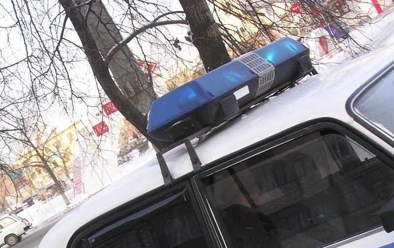 В Нижнем Уфалее (Челябинская область) сотрудники полиции остановили автомобиль Нива 21213, которо