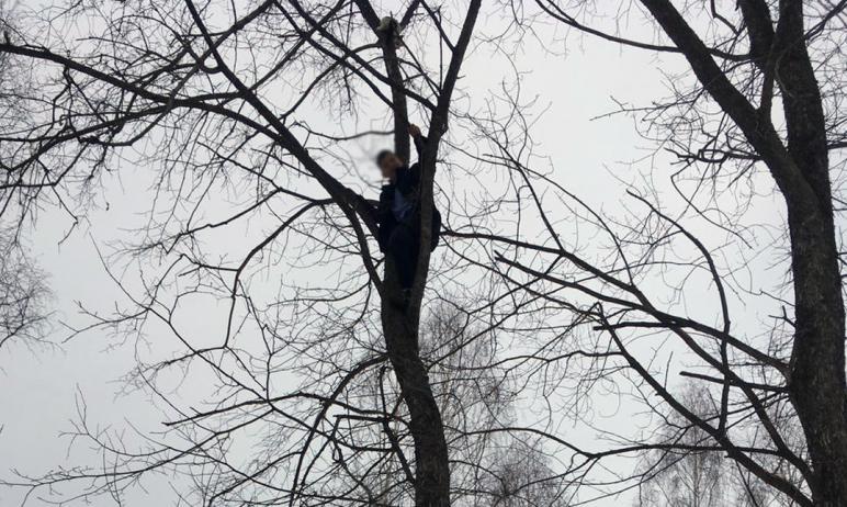 За помощью к спасателям златоустовского отряда (Челябинская область) обратились очевидцы происшес