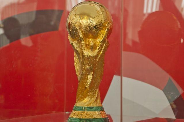 Как отметил министр физической культуры и спорта Челябинской области Леонид Одер, приезд Кубка –