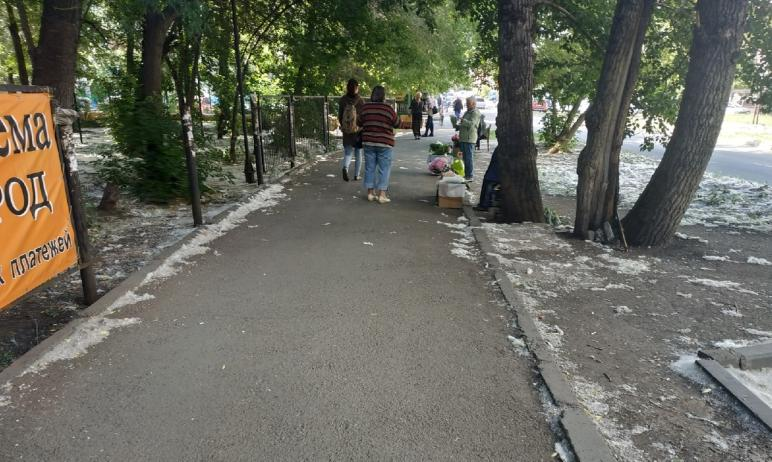 Челябинские садоводы, годами радовавшие жителей района областного суда собственноручно выращенным