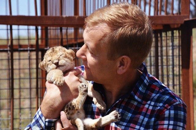 Спасенная челябинцами львица Лола впервые принесла потомство. Малышку назвали Лилу. Малышк