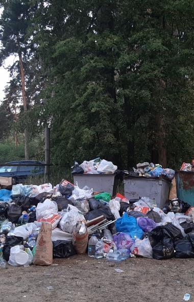 Прокурор Челябинской области Виталий Лопин пообещал в кратчайшие сроки рассмотреть обращение обще