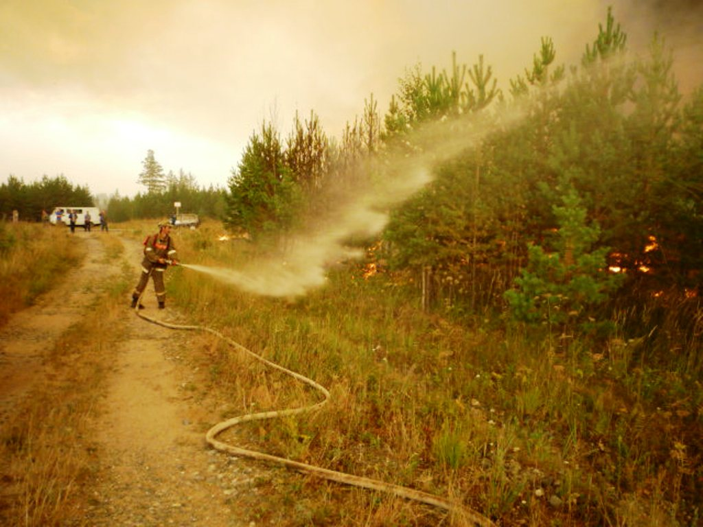 Как сообщает пресс-служба Главного управления лесами области, всего на тушении лесных пожаров был