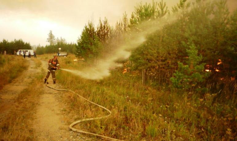Прокуратура Миасса (Челябинская область) потребовала возбудить уголовное дело по факту пожаров в
