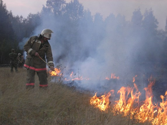 Природное возгорание возникло вчера, первого августа, по неустановленным причинам. Сейчас его лок