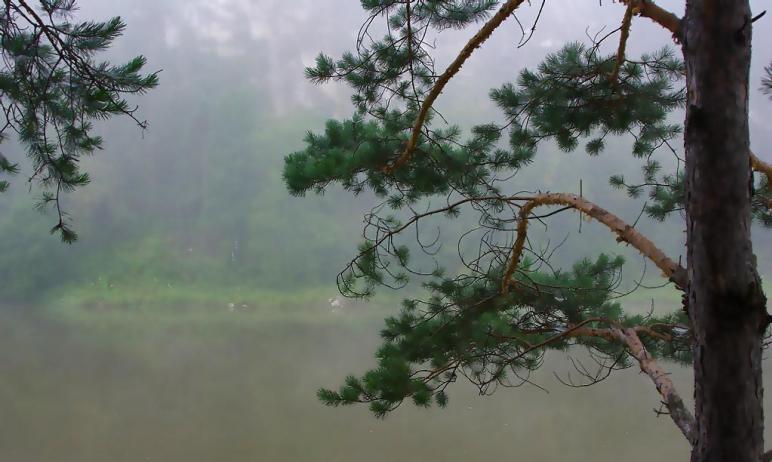 В среду, 23 июня, в Челябинской области ожидается переменная облачность, пройдут кратковременные
