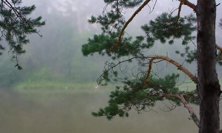 Во вторник, 10 августа, в Челябинской области ожидается облачная погода с прояснениями, местами п