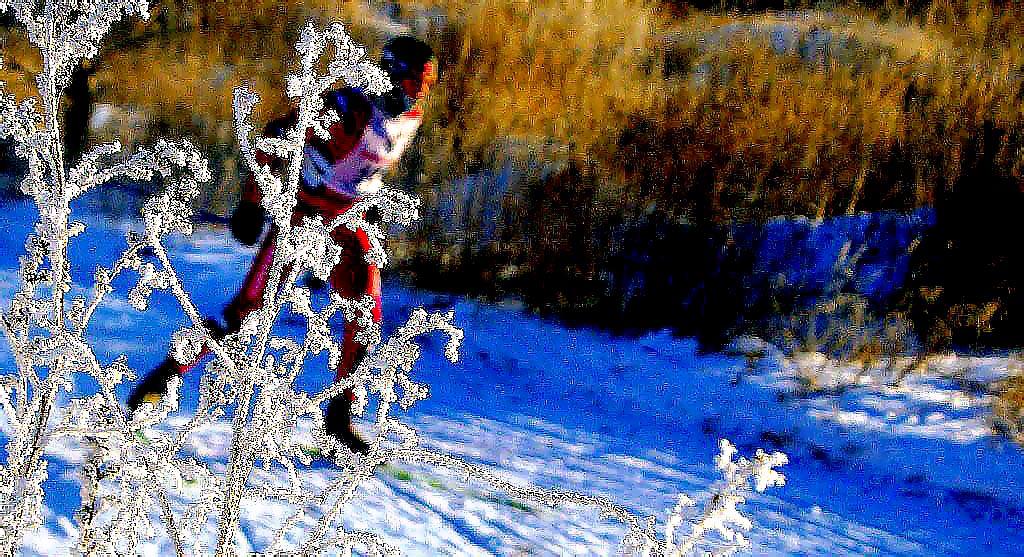 Как сообщили агентству «Урал-пресс-информ» в пресс-службе АО «Челябинский цинковый завод», на лыж