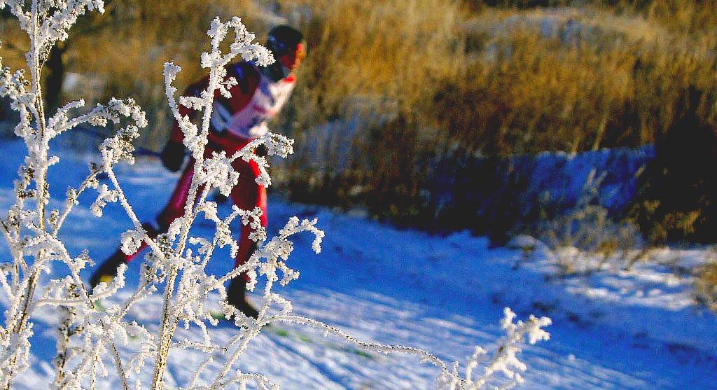 В этом году «Лыжня России» отмечает юбилей – гонка состоится уже в 35 раз. Начиная с 1982 года, е