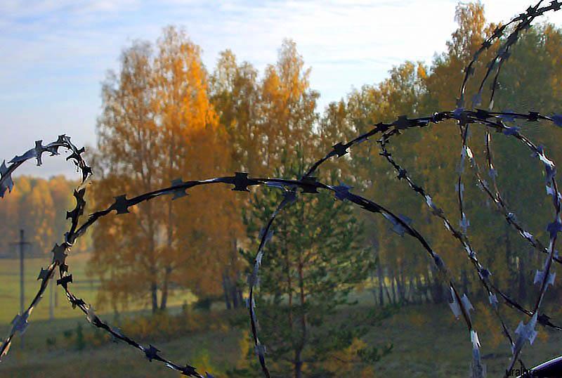 Еще один фигурант уголовного дела экс-главы Миасского городского округа (Челябинская область) - н
