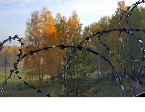 Жительница Карабаша (Челябинская область) обвиняется в серии циничных преступлений. Мошенница игр