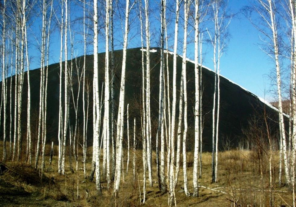 В шести городах Челябинской области продлены неблагоприятные метеорологические условия, способств
