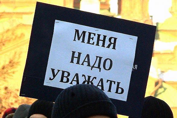 Участники общественных движений Челябинской области собрались сегодня, 29 ноября, у здания Законо