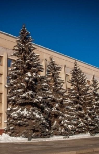 Заболеваемость ОРВИ и гриппом населения в Магнитогорске (Челябинская область) на 38,6% ниже эпиде