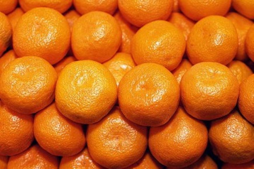 Для того, чтобы не завезти в продуктовые магазины Южного Урала и России мандарины с опасными вред
