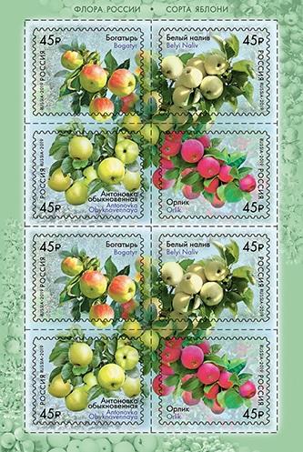Российские сорта яблок появились на почтовых марках. На почтовых марках изображены сорта я
