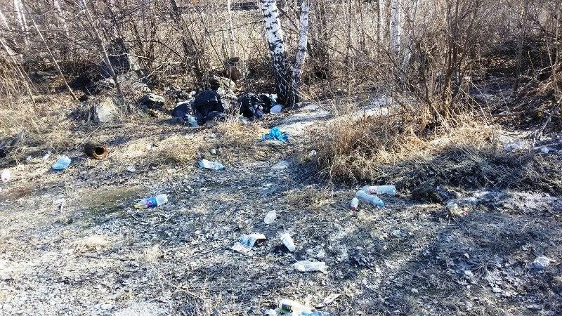 В Челябинской области территория вблизи Ильменского заповедника превратилась в свалку. Ур
