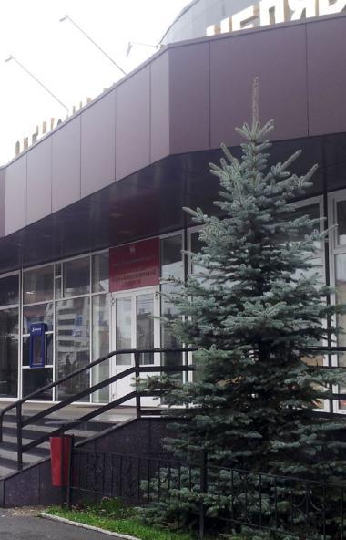 Первый заместитель министра социальных отношений Челябинской области Татьяна Ильина ушла в отстав