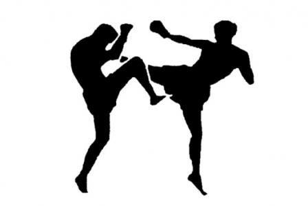 В традиционном турнире приняли участие 231 спортсмен из 14 городов Челябинской области и Республи