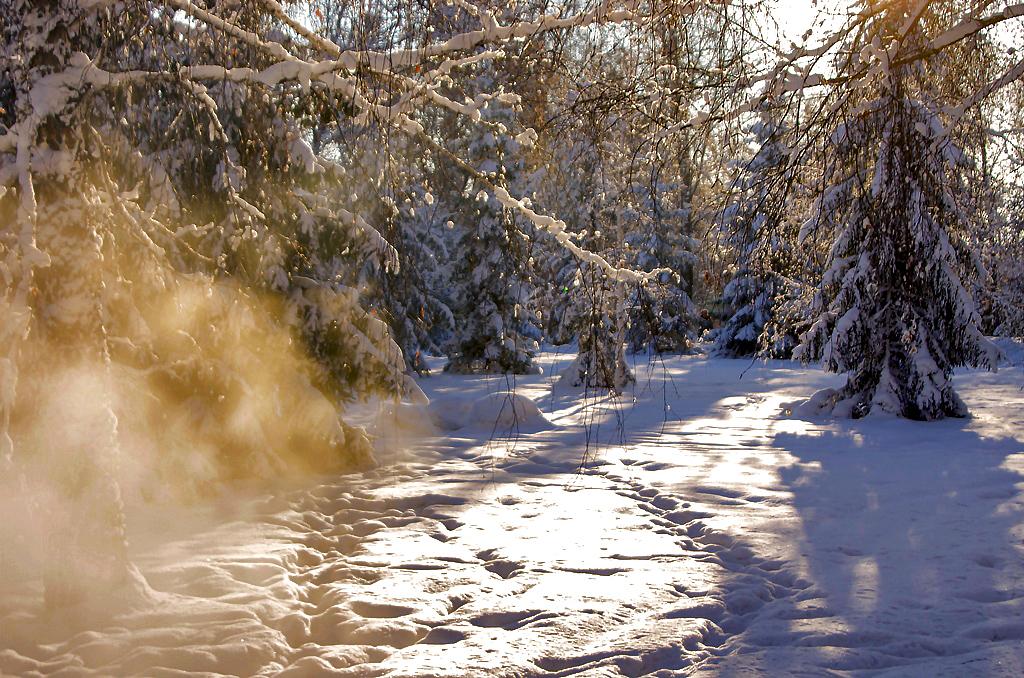 Аномально холодная погода и высокое атмосферное давление ожидаются в предстоящие четверо суток в
