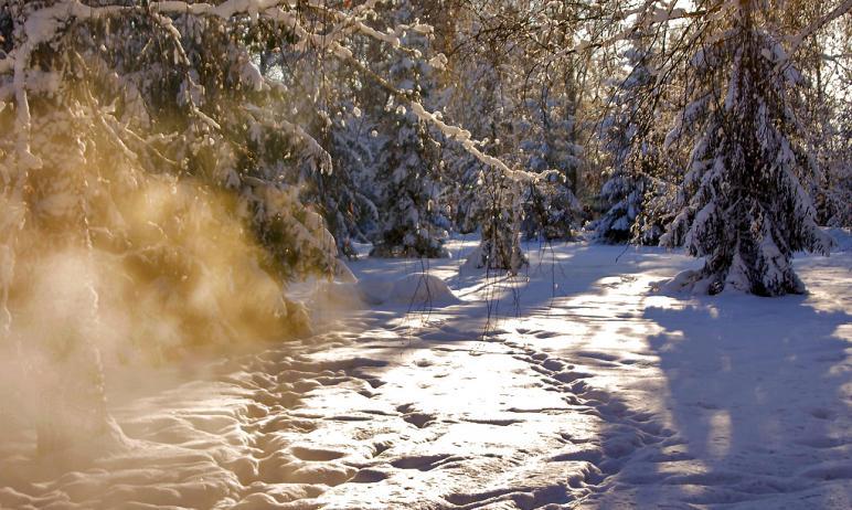 Сегодня, десятого февраля, в связи с низкой температурой воздуха отменены занятия в школах ряда м