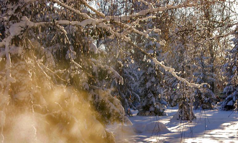 В пятницу, 12 марта, в Челябинской области ожидается понижение температуры воздуха, усиление ветр