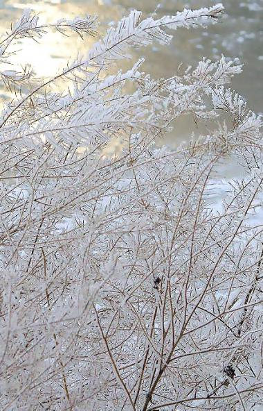 В пятницу, 24 января, в Челябинской области ожидается облачная погода с прояснением, местами прой