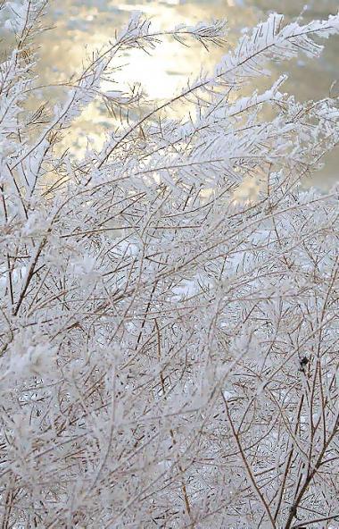 В предстоящие выходные, 25 и 26 января, в Челябинской области ожидается облачная погода с проясне