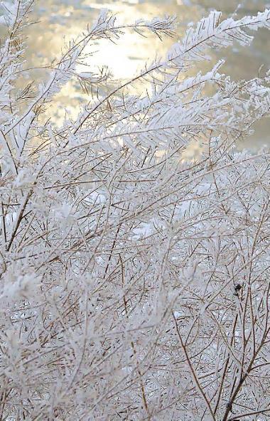 В предстоящие выходные в Челябинской области ожидается облачная погода с прояснениями, небольшой