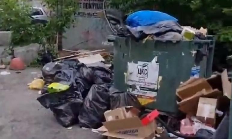 В Челябинской области сотрудники Центра коммунального сервиса возобновили проверки контейнерных п