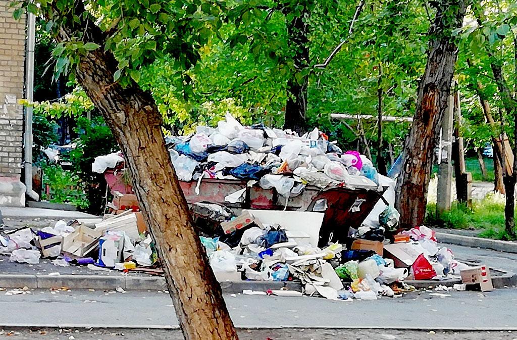 Жителей Металлургического района города возмущает тот факт, что во дворах района систематически н