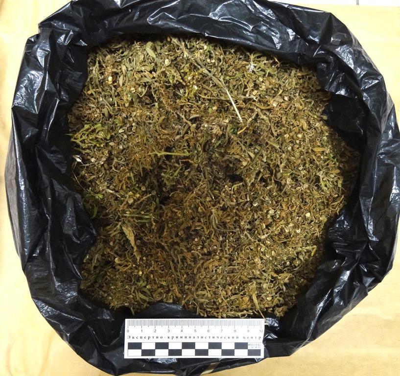 В Челябинской области транспортные полицейские задержали южноуральца с пакетом марихуаны. Входе р