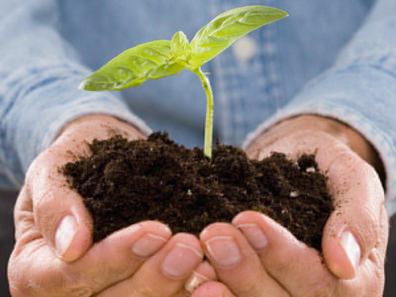 Команда челябинского благотворительного экологического фонда «Моя планета» во главе с руководител