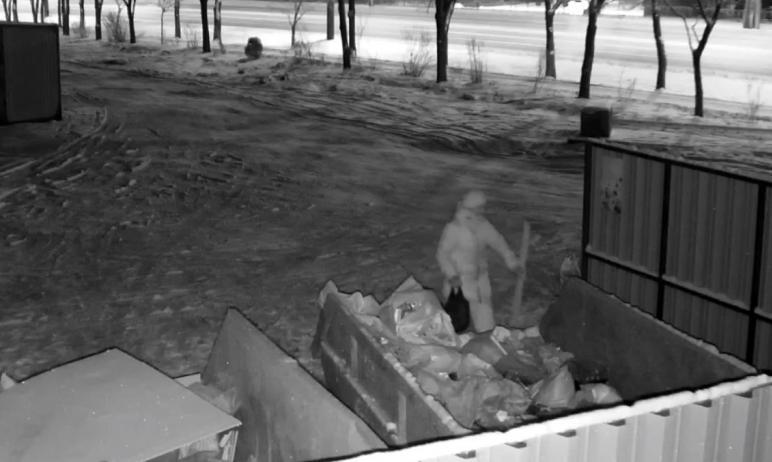 Жители Челябинска не перестают удивлять. Так, прилично одетая горожанка средних лет попала в приц