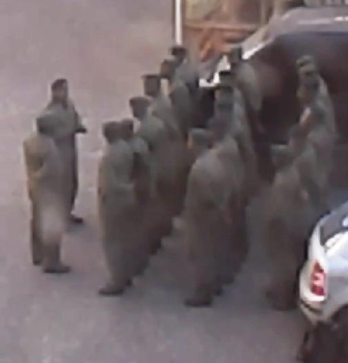 Как стало известно агентству «Урал-пресс-информ» из сообщений штаба армии Новороссии,