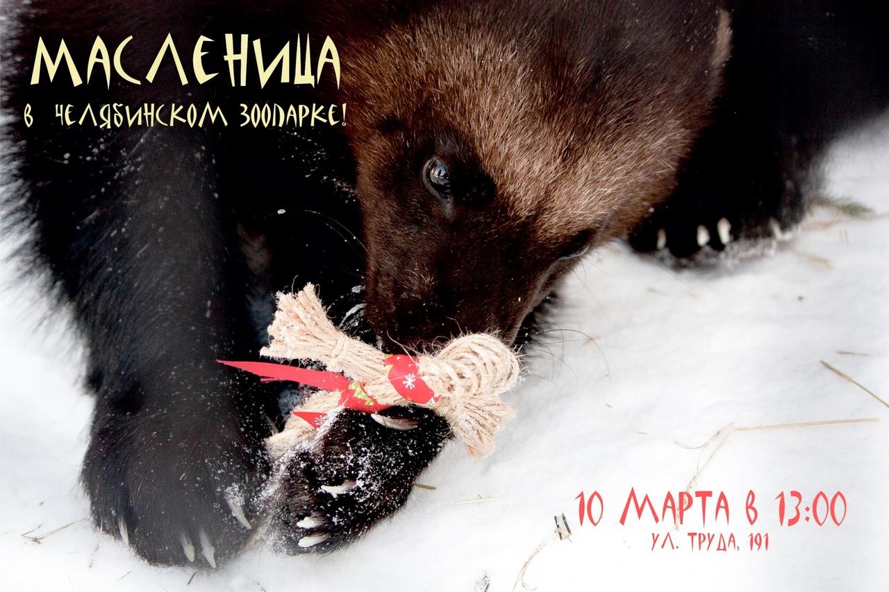 Челябинский зоопарк приглашает горожан на Масленицу. Проводы зимы на территории муниципального зв