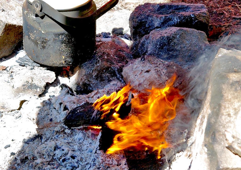 Решением правительства Челябинской области в регионе введен особый противопожарный режим.